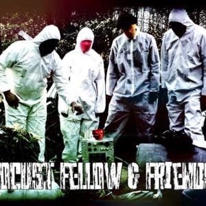 Locust Fellow & Friends