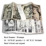 Plumage Print Set
